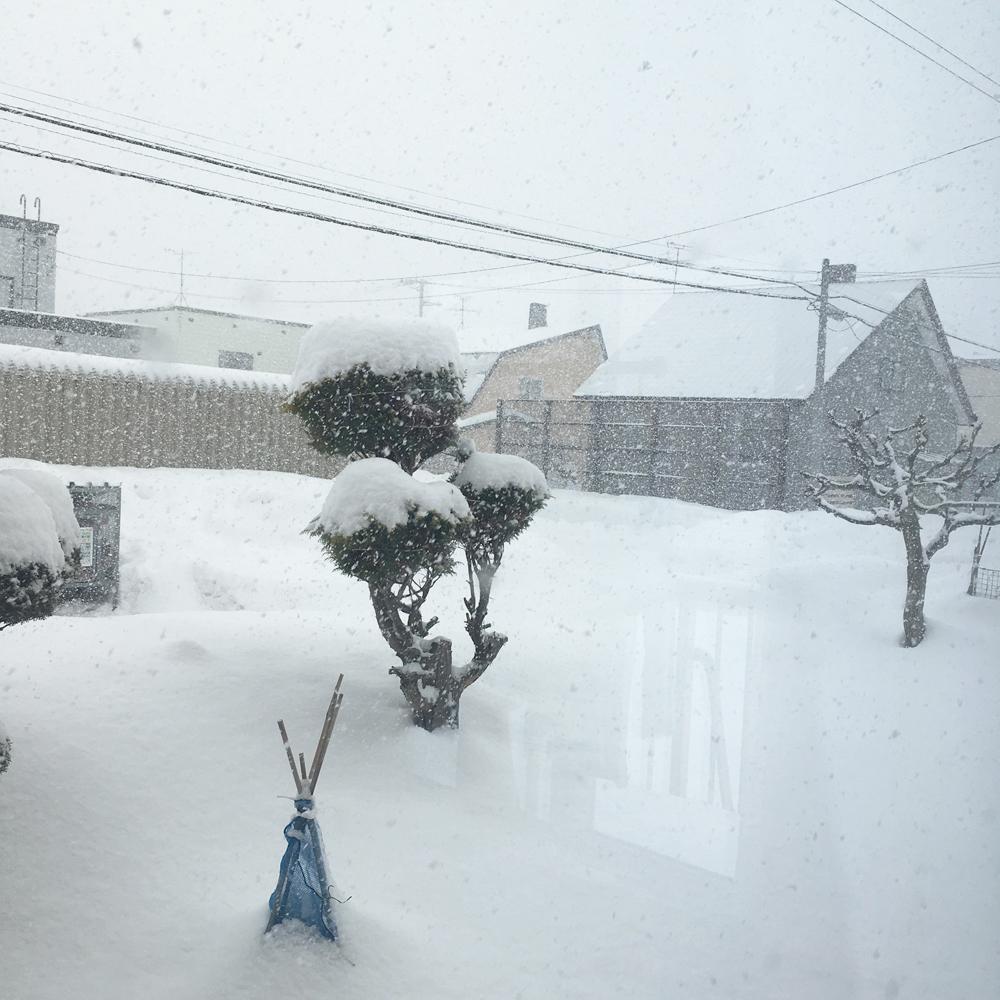 北海道に帰って思う